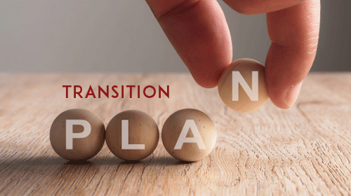 Free Transition Plan Templates (MS Word, Excel, PDF)