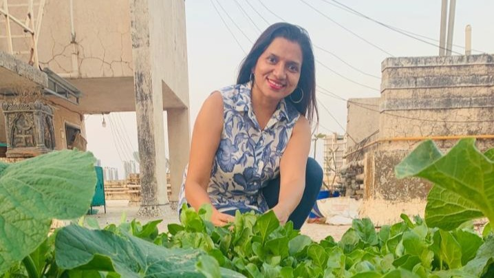 At 50, She Turned Her Building Terrace In Organic Farm - Produces 2kg Of Veggies Every Day