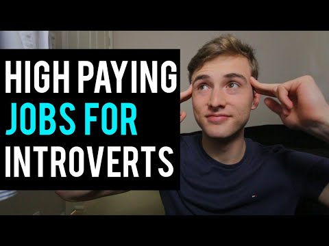Top 10 Highest Paying Jobs For Introverts